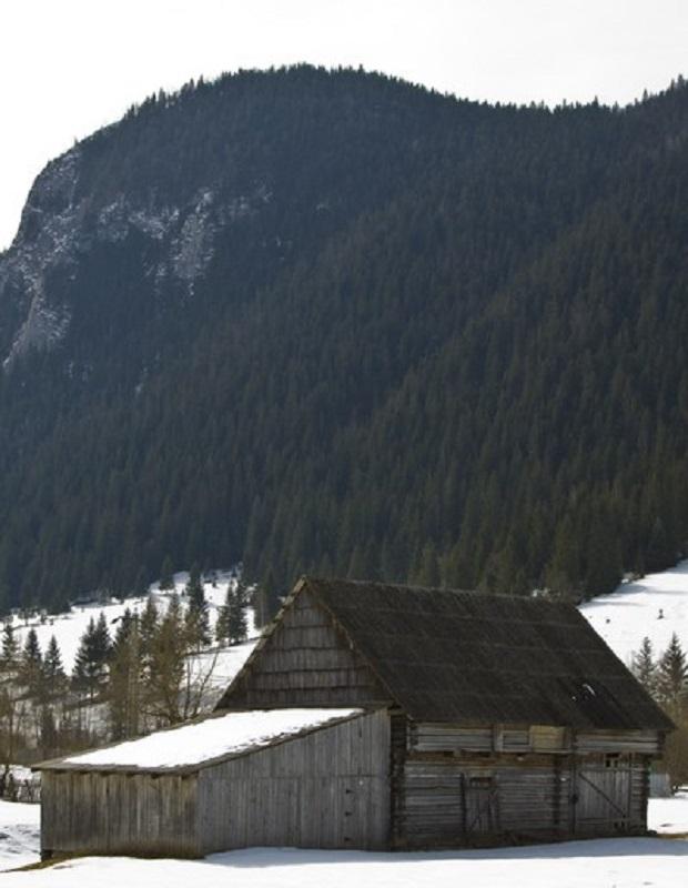 maison traditionnelle roumanie neamt 9