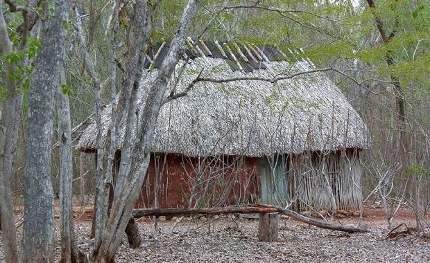 maison-maya-1
