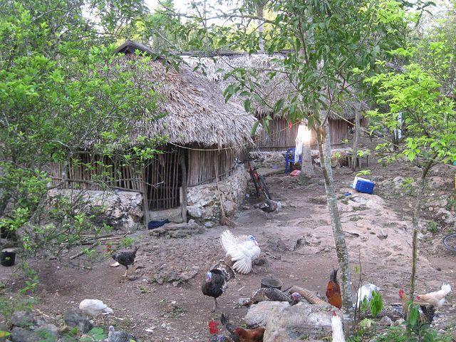 maison-maya-8