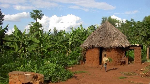 les maisons au burundi With charming maison toit de chaume 11 les maisons au burundi