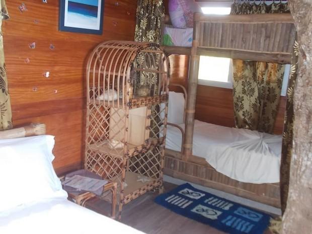 cabane-manguier-3