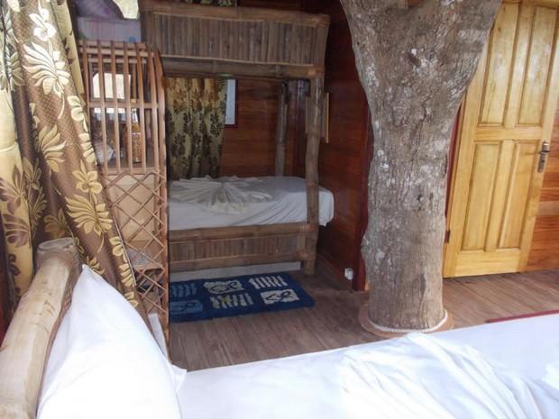 cabane-manguier-4