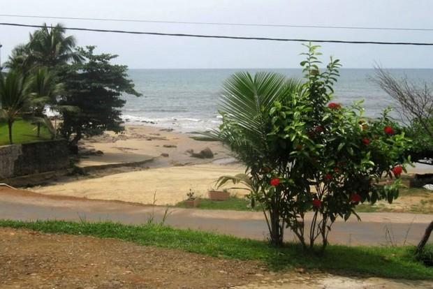 cabane-manguier-6