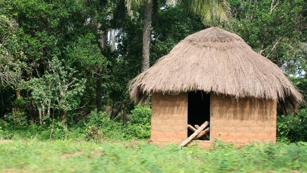 Huttes traditionnelles en Guinée