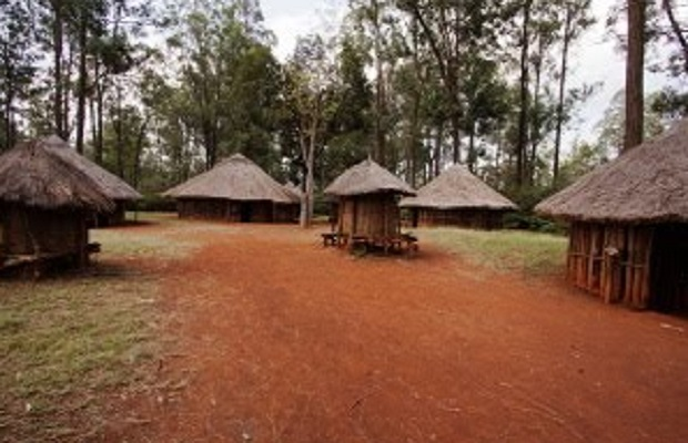 huttes typiques kenya
