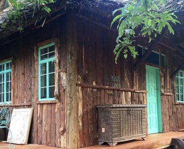 cabane toit de chaume