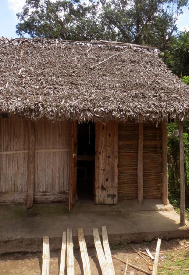 Les maisons en mat riel v g tal de madagascar for Maison avec toit vegetal