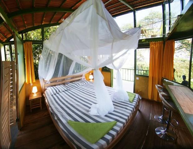 cabane vitrée