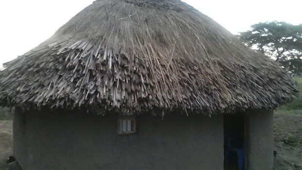 Hutte traditionnelle ougandaise