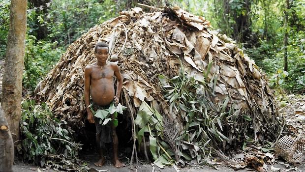 La hutte du peuple Mbuti