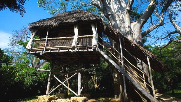 Superbes cabanes perchées en Tanzanie