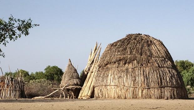 La hutte du peuple Arboré