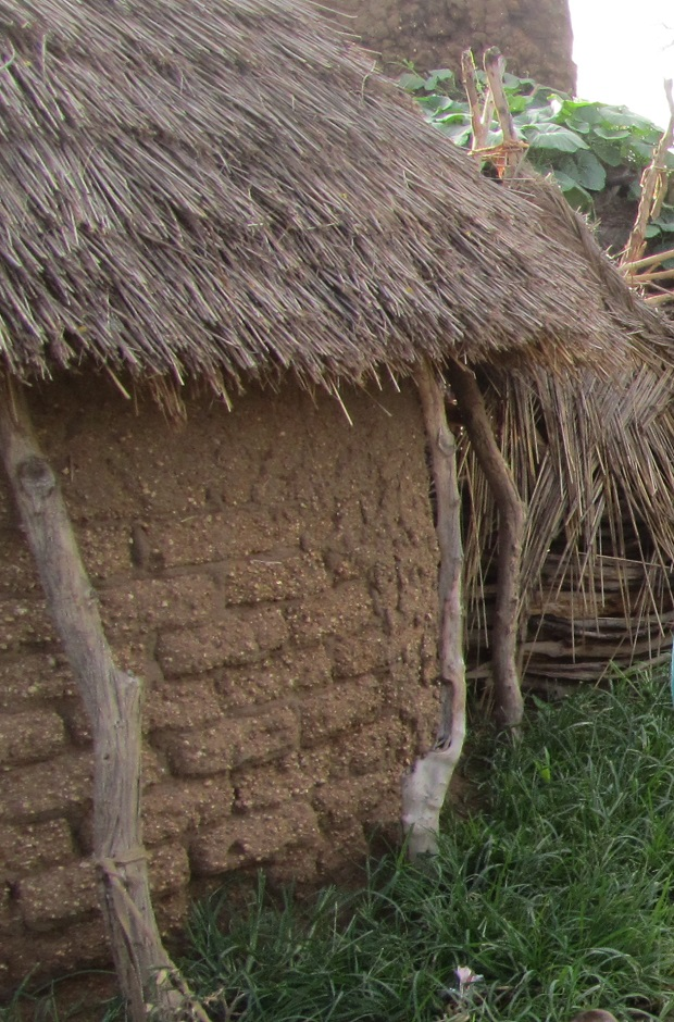 maisons traditionnelle tchad