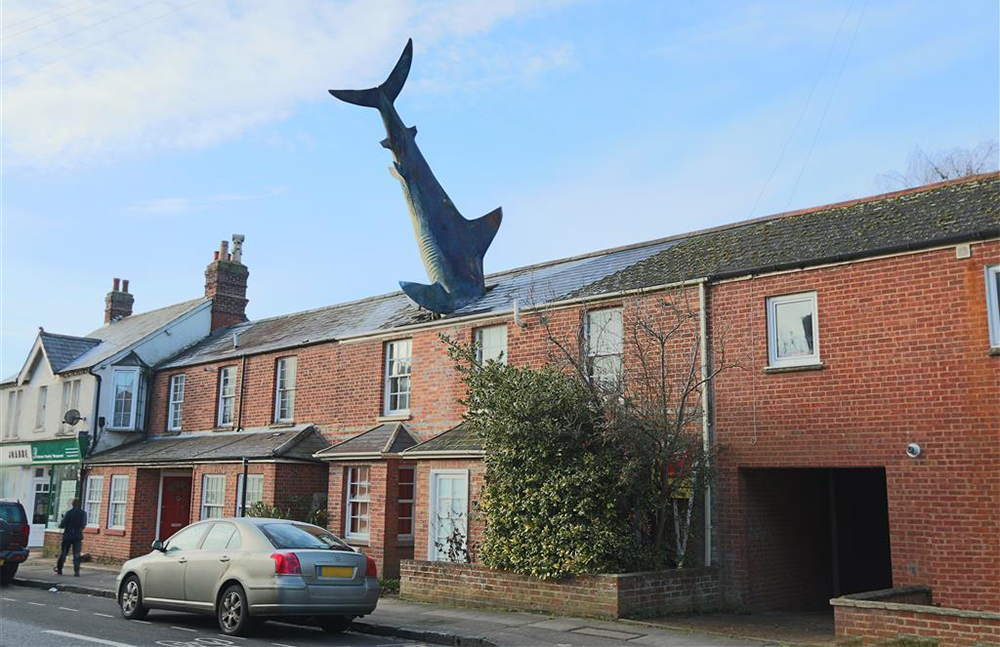 maison requin headington