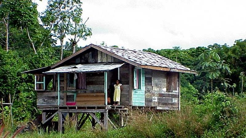 maison pilotis guyana