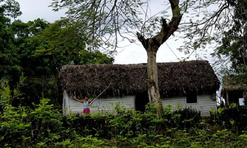 maison toit de chaume cuba