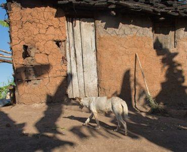 maison rurale honduras