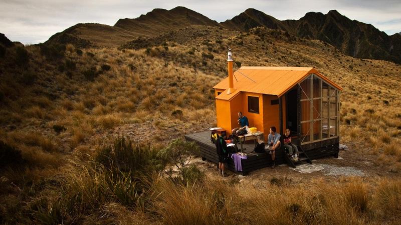 hutte nature nouvelle zélande
