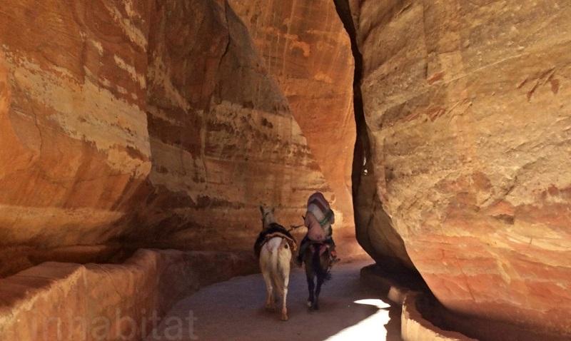 désert jordanie