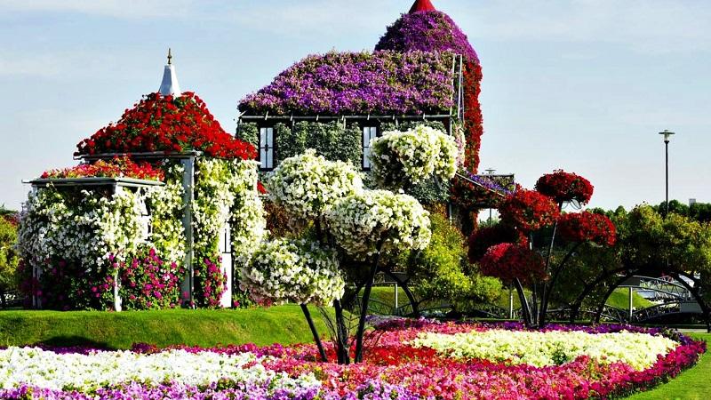 Maison de fleurs à Dubaï