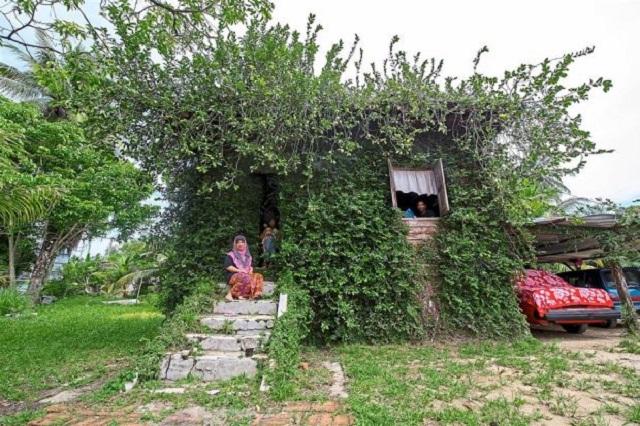 maison verte malaisie