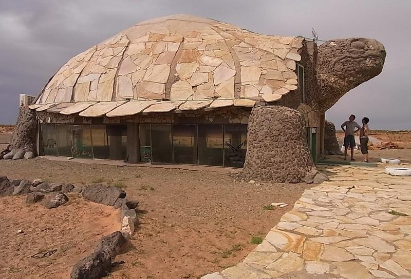 maison tortue mongolie