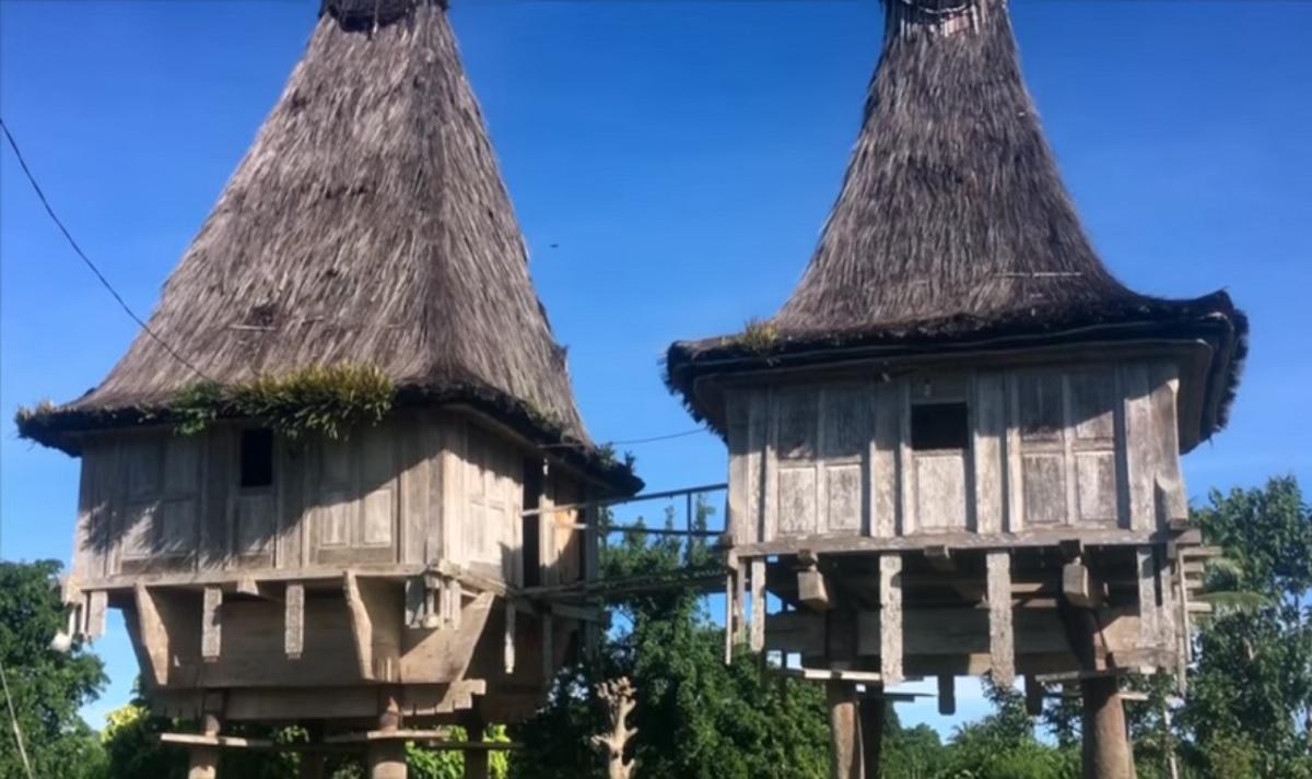 Les Maisons Fataluku Du Timor Oriental