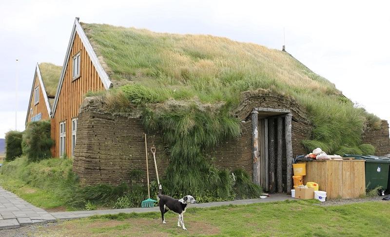 maison herbe histoire