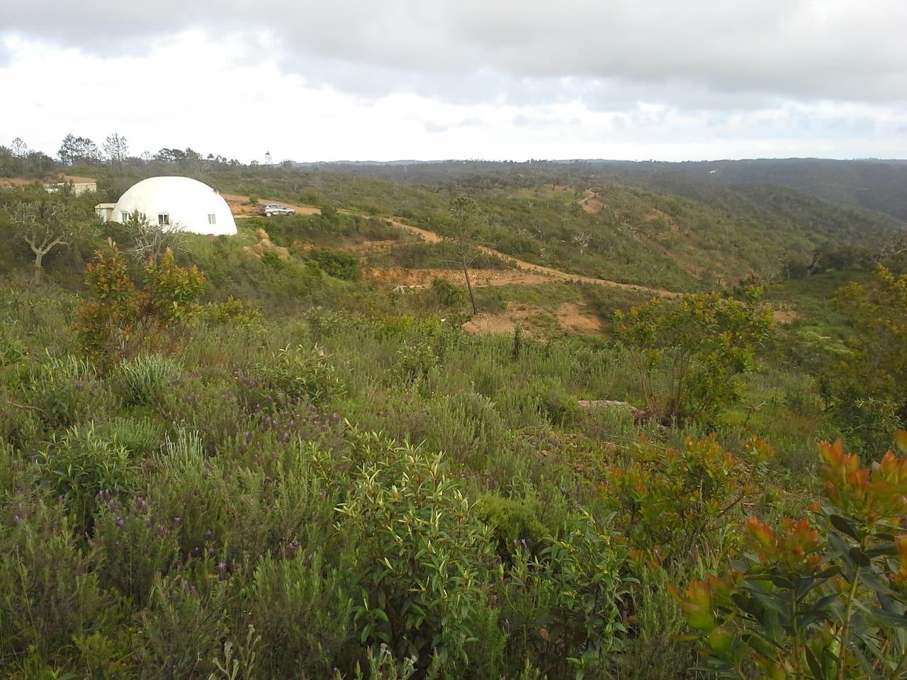 maison igloo portugal
