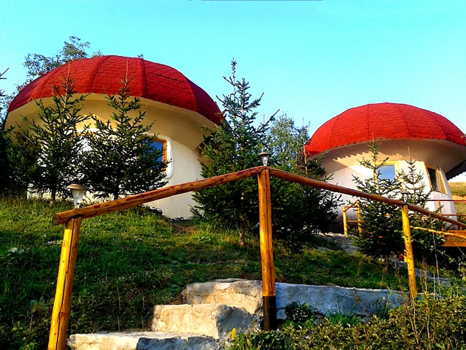 maisons champignon montenegro