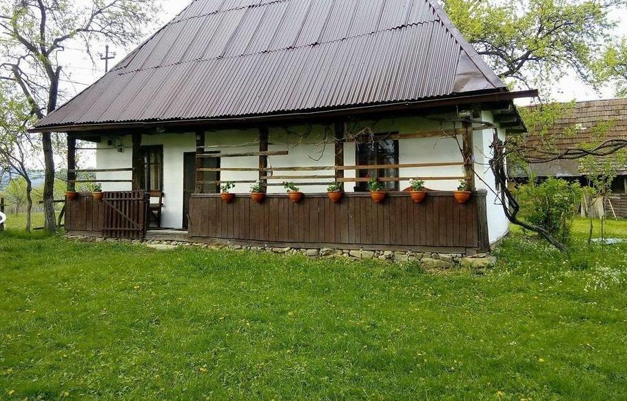 Maison traditionnelle de marmatie for Annuler offre achat maison