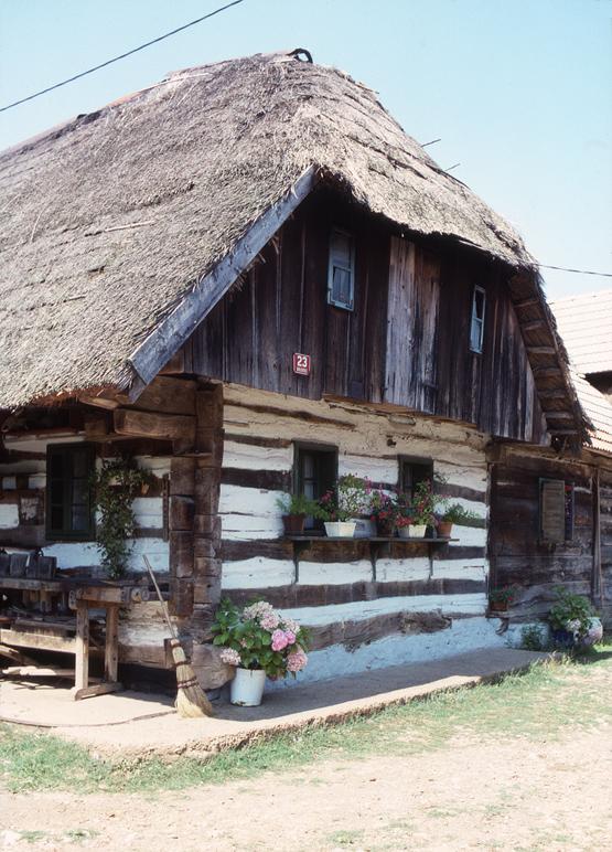 Maison traditionnelle en bois à Dolenjci