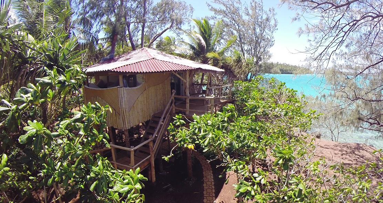 cabane arbres tonga