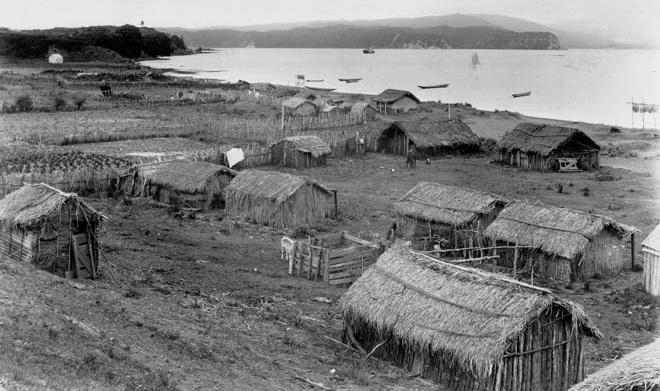 maisons traditionnelles maori