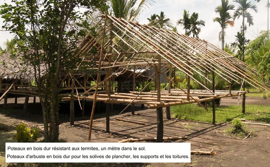 structure maison papouasie