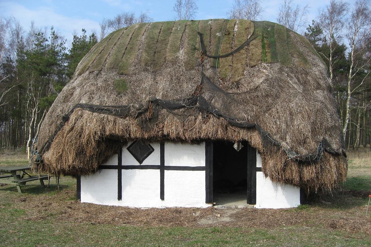 Læsø maisons algue