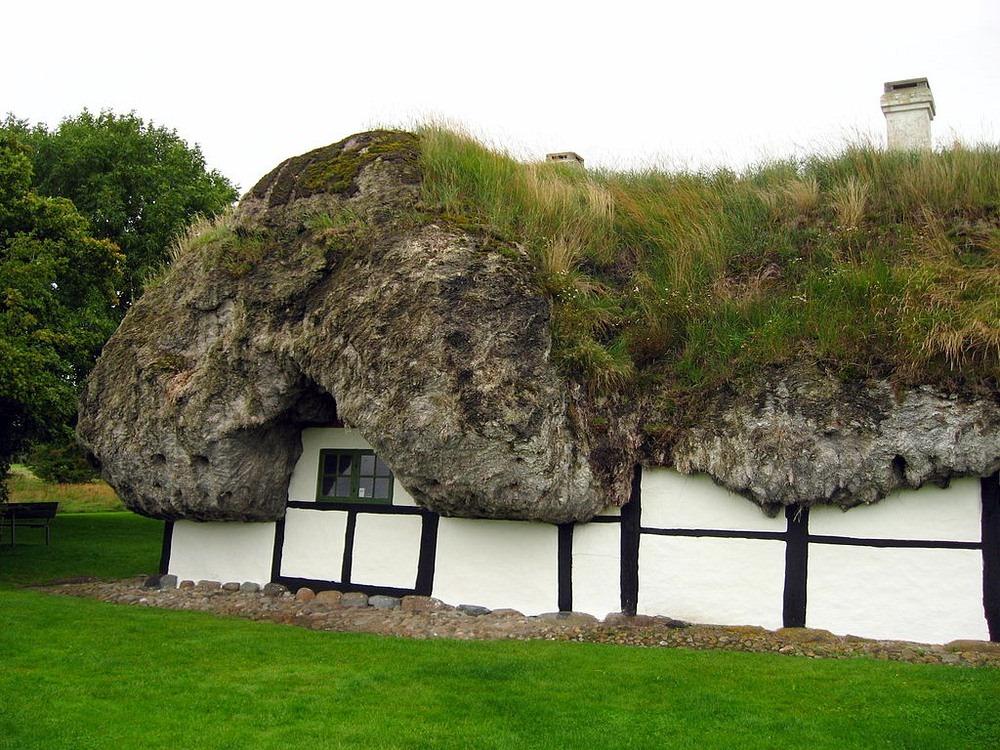 maison toit algues