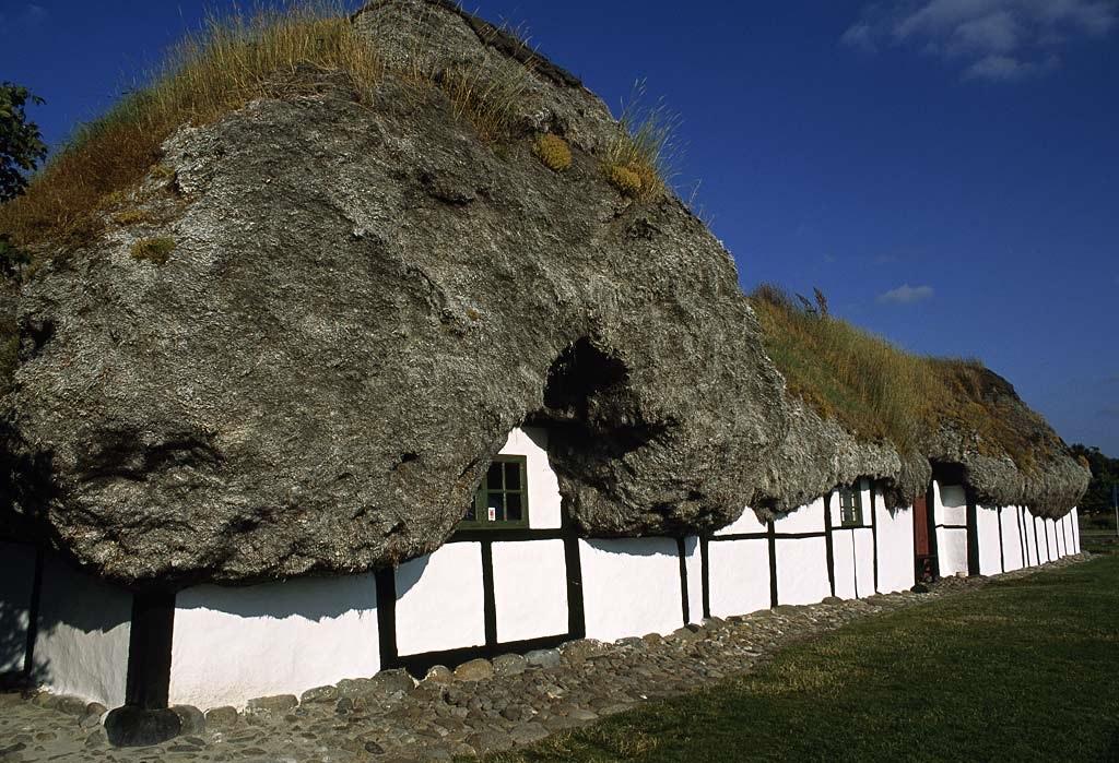 Læsø maisons algues