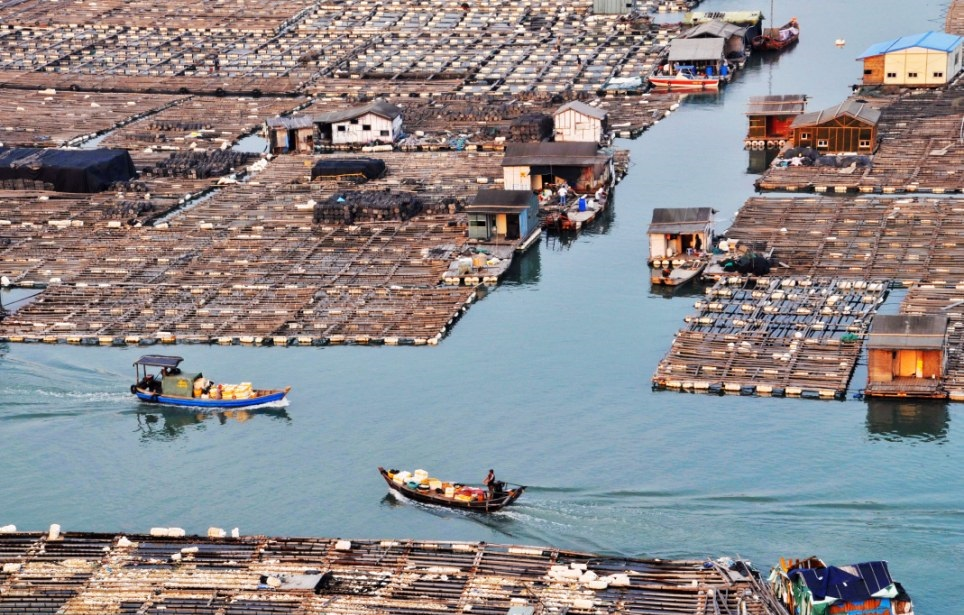 maisons flottantes tanka