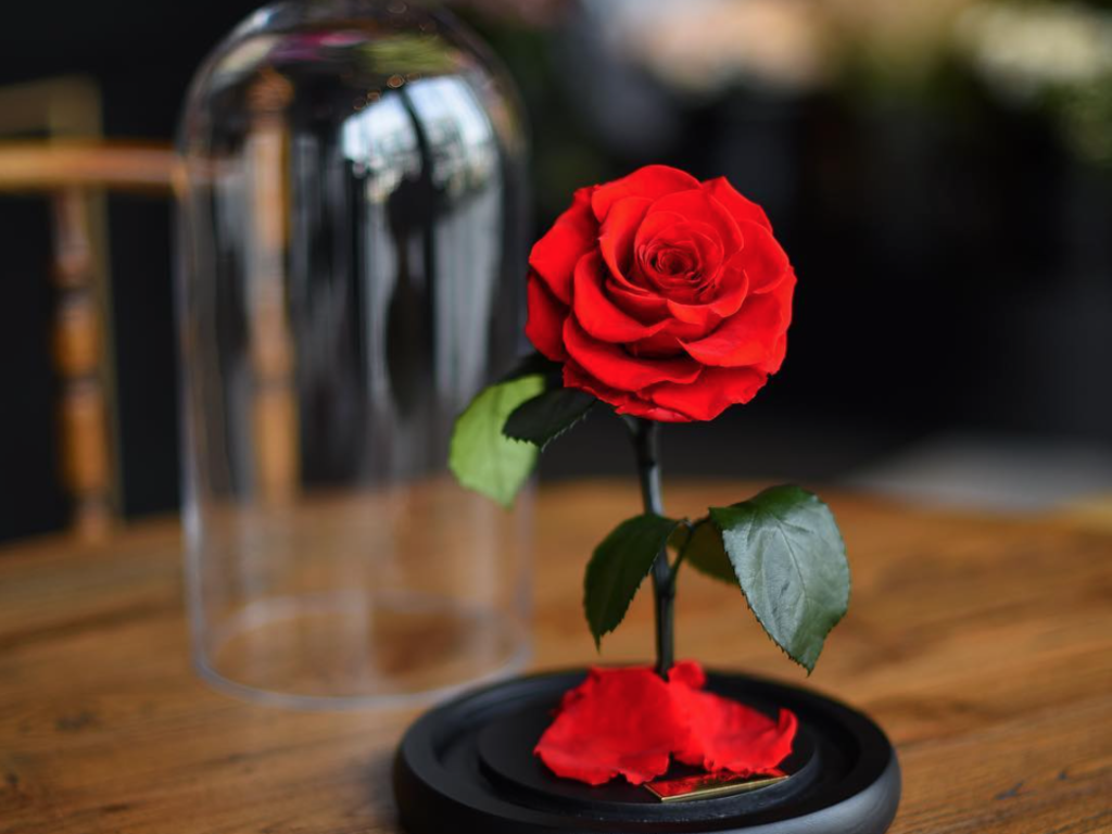 Idee Deco La Rose Eternelle