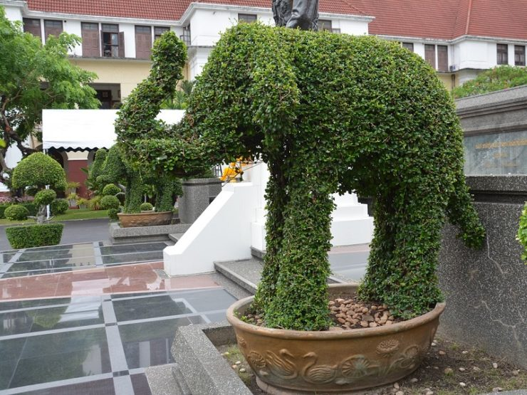 topiaire elephant